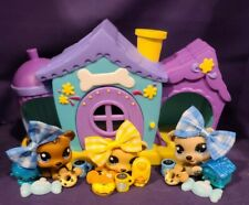 Authentic Littlest Pet Shop RARE  #1554 1555 1556 Petriplets Bear Cub Triplets