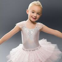 Revolution M Youth Dance Costume Silver w/ Pink Tutu and Squin One Piece