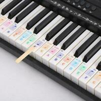 Music Keyboard /Piano Stickers 88/61/54/49 Key Set Beginner Play Learn X2J9