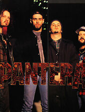 Pantera 1994 Original Far Beyond Driven Japan Tour Program Dimebag Darrell