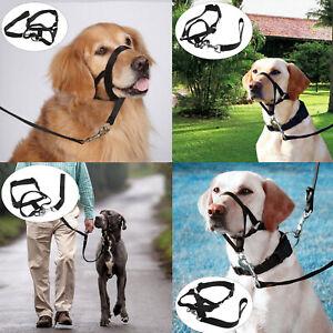 Dog Muzzle Halti Head Collar Stops Dog Pulling Halter Training Nose Plastic