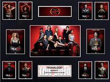 Trueblood Season 7  (16 x 12) Display