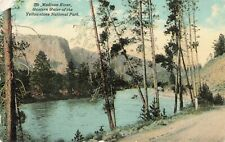 Postcard Madison River Yellow Stone Park
