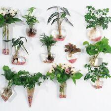 Hängende Glas Vase Mini Aquarium Fischzucht Blumenvase Pflanze Vasen Wandvase