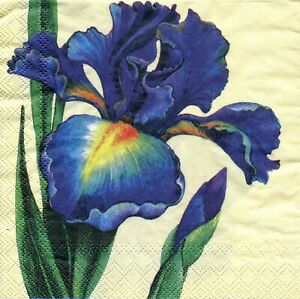 2 pcs Single Paper Napkins For Decoupage Craft Irises on a yellow background
