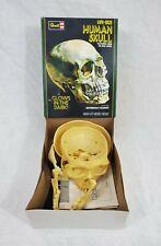 Vtg 1987 Revell Life Size Human Skull Glow In The Dark Model Kit H-904 In Box
