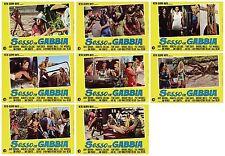 Sexe IN Gabbia Set Fotobusta 8 Pz. Film Sexploitation 1971 Rare Used Lobby Card