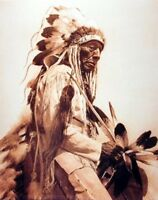 Chief The Old Cheyenne Edward Curtis Native American Art Print Poster (16x20)