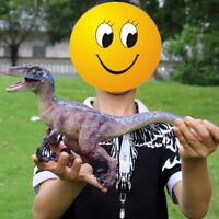 "14.5"" Super Velociraptor Dinosaur Figure Raptor Animal Toy Collector Kid Gift"