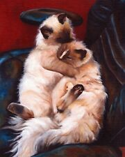 12x16 Ragdoll Cat Signed Art Print of Original Oil Painting Artwork by Vern