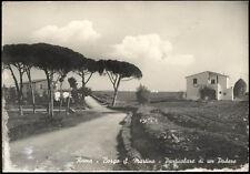 cartolina ROMA borgo s.martino-particolare di un podere