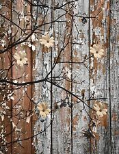 Rustic Modern Flowers On Tree Branch Wall Art Home Decor Matted Picture