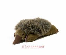 """Australian Little Hedgehog poire de """"AUSSIE canettes's - 22cm/ ~ 8 in (environ 20.32 cm)"""