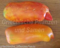 🔥 🍅 FEDERLE Tomate * Flaschen-Tomaten Riesenfüchte*10 Samen