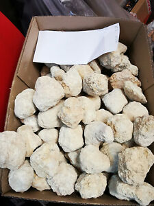 Whole Geodes  1Kg packs of small geodes