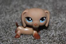 Littlest Pet Shop Tan Brown Dachshund #518 Puppy Dog LPS Toy Blue Tear Drop Eyes
