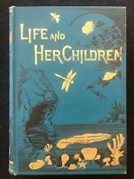 Life and her Children by Arabella B. Buckley, New York 1883 illustrated