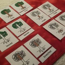 Parts of The Tree MONTESSORI 3 PART NOMENCLATURE CARDS
