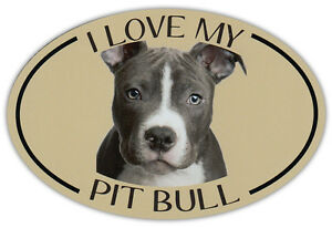 Oval Dog Breed Picture Car Magnet - I Love My Pit Bull (Pitbull) - Sticker