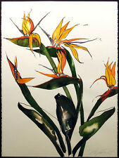 Noel DeGaetano Signed Original Watercolor Painting of Birds of Paradise 1980 OBO
