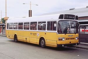 NORTHERN / TYNE AND WEAR TRANSPORT SGR550R 6x4 Quality Bus Photo