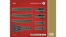 fleischmann 6193