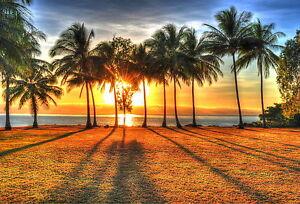 Tropical Australia  Cairns Palm Cove Canvas  Beach Photo Print Sunrise Sunset