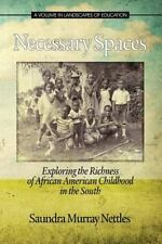 Necessary Spaces: Exploring the Richness of African American Childhood in the So