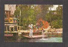 Postcard: Performing Porpoise - Cape Coral Gardens - Cape Coral, Florida