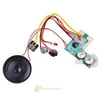 10secs 10s-Ton-Sprach Audio Recorder beschreibbare Modul Chip Für Karte Musik
