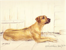 RHODESIAN RIDGEBACK RRB DOG FINE ART LIMITED EDITION PRINT - By the Barn Door