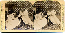 Stereo view The unwilling patient Two girls with little dog Underwood 1901 S977