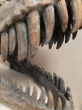 More details for extra large 51.5cm t-rex tyrannosaurus rex wall hung dinosaur skull nemesis now