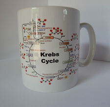 Krebs Cycle Gift Mug Cup Present Science Biology Biochemistry Student Teacher