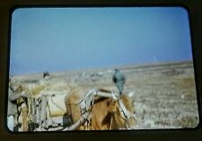 Authentic Korean War Slide 1953 From A Soldiers 35MM Lens in Kodachrome
