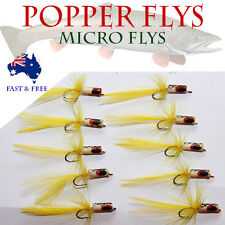 Micro Popper Foam Fly Fishing Lures Freshwater Flies Shrimps Bugs BASS Tackle