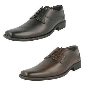 Bruno Donnari Hombre Negro o Marrón Zapatos de Cuero Nn 905 (R4B)