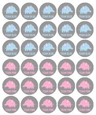30 X Gender Reveal Girl Boy Cupcake Toppers Edible Wafer Paper Fairy Cake Topper