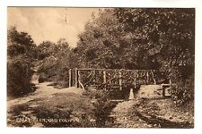 Fairy Glen - Old Colwyn Photo Postcard c1908