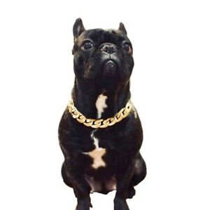 Dog Pet Chain S Xl Hot Lead Steel Thick Puppy Chain Gold Safety Collars Necklace