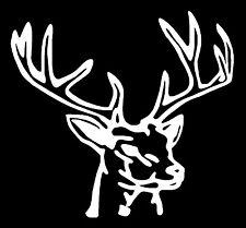 DEER HEAD hunting fishing rack horns whitetail truck window decal sticker