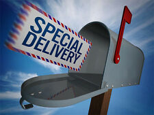 SpecialDelivery.us - Aged 15 Year Premium Domain Name - for Mail, Holidays, etc.