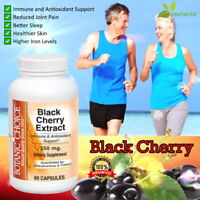 BLACK CHERRY 4:1 Extract 250mg Antioxidant Arthritis Joint SUPPLEMENT 60 Capsule
