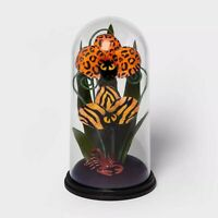Hyde & Eek Boutique Animal Print Halloween Faux Plants Cloche Terrarium TARGET