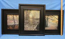 Scenic Print Wide Frame Forest Trees Monocromatic Color Scheme 19 x 23 Set of 3
