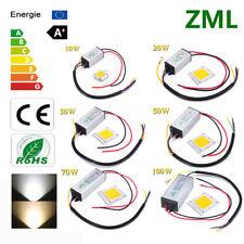 10W 20W 30W 50W 70W 100W LED COB Chip+LED Driver Waterproof IP65 Voltage 85~265V