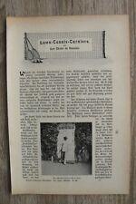Lawn Tennis Turnier Sport 1900/01 Kurt Chales de Beaulieu Zeitschrift Artikel