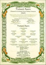 Tipperary All-Ireland Senior Hurling Champions 1964: GAA Print