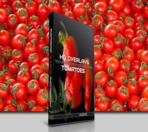 200 TOMATOES FOOD DIGITAL PHOTOSHOP OVERLAYS BACKDROPS BACKGROUNDS PHOTOGRAPHY