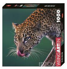 Anup shah-Leopard-Heye puzzle 29421 Edition vino jardín - 1000 PCs.